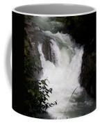 Bz Falls 1 Coffee Mug