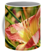 Cabbage White Butterfly On Day Lily Coffee Mug