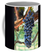 Cabernet Sauvignon Coffee Mug by Robert Bales