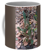Cacti And Leaves Coffee Mug