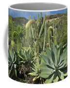 Cacti Of Koko Crater Coffee Mug