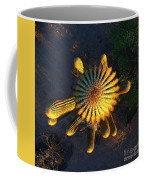 Cactu Sundown Coffee Mug