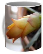 Cactus Bud Coffee Mug