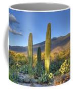 Cactus Desert Landscape Coffee Mug