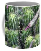 Cactus Drama Coffee Mug