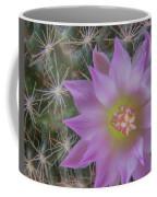 Cactus Flower #2 Coffee Mug