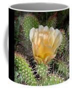 Cactus Rose Coffee Mug