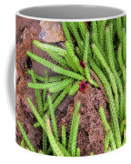 Cactus Splendor Coffee Mug