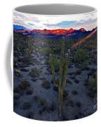 Cactus Sun Beam Coffee Mug