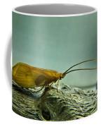 Caddisfly Coffee Mug