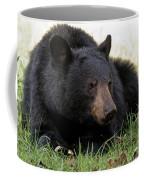Cades Cove Bear II  Coffee Mug