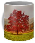 Cades Tree After The Rain Coffee Mug