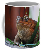 Cain Toad Coffee Mug