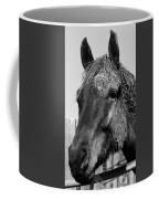Caked Coffee Mug