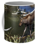 Calf Moose Coffee Mug
