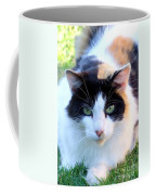 Calico 2 Coffee Mug