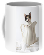 Calico Kitten In White Pitcher Coffee Mug by Garry Gay