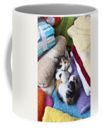 Calico Kitten On Towels Coffee Mug by Garry Gay