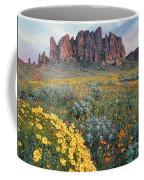 California Brittlebush Lost Dutchman Coffee Mug