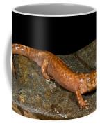California Giant Salamander Coffee Mug