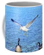 California Gull - Canada Geese Coffee Mug