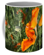 California Morning Coffee Mug
