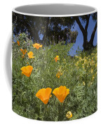 California Poppy Eschscholtzia Coffee Mug