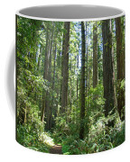 California Redwood Trees Forest Art Prints Coffee Mug