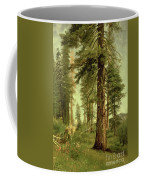 California Redwoods Coffee Mug