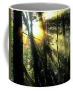 California Redwoods Coffee Mug by Richard Ricci