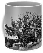 California Roadside Tree - Black And White Coffee Mug