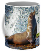 California Sea Lion At La Jolla Cove Coffee Mug by Sam Antonio Photography