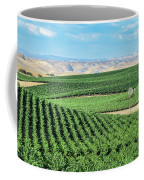 California Vineyards 1 Coffee Mug