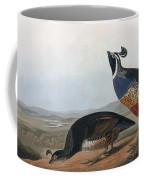Californian Partridge Coffee Mug