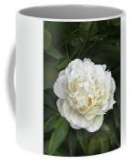 Call It Love Coffee Mug