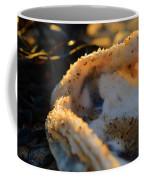 Call Of The Sea Coffee Mug
