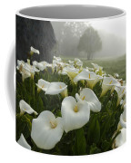 Calla Lilies Zantedeschia Aethiopica Coffee Mug