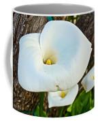 Calla Lily At Carmel Mission-california Coffee Mug