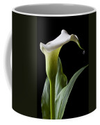 Calla Lily With Drip Coffee Mug