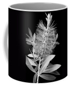 Callistemon Beauty 4 Coffee Mug