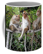 Cambodia Monkeys 7 Coffee Mug