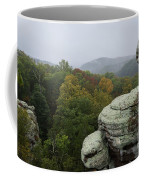 Camel Rock Coffee Mug