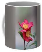 Camellia Sasanqua Yuletide 1 Coffee Mug