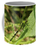 Cameo Green Dragonfly Coffee Mug