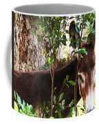 Camera Shy Donkey Coffee Mug