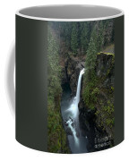 Campbell River Rain Forest Falls Coffee Mug