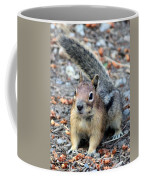 Campground Chipmunk Coffee Mug