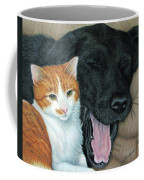 Can We Watch Something Other Than Big Cat Diary Coffee Mug