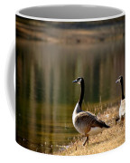 Canada Geese In Golden Sunlight Coffee Mug