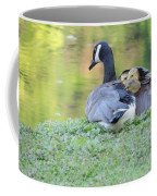 Canadian Goose Mother And Babies Coffee Mug